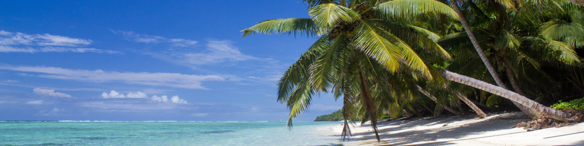 Paradise : white sand, clear water, coconut, Madagascar